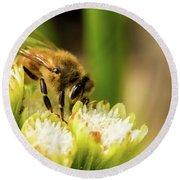 Pollen Collector  Round Beach Towel