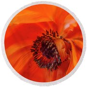 Poppy Detail Round Beach Towel by Garry McMichael