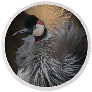 Portrait Of A Crowned Crane Round Beach Towel