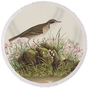 Prairie Titlark Round Beach Towel