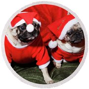 Pugs Dressed As Father Christmas Round Beach Towel