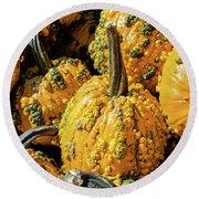 Pumpkins With Warts Round Beach Towel