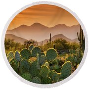Pure Sonoran Gold  Round Beach Towel