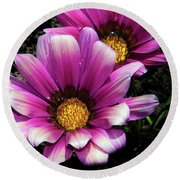 Round Beach Towel featuring the photograph Purple Gazania by Elvira Ladocki