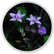 Purple Orchids 2 Round Beach Towel