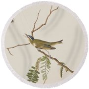 Red Eyed Vireo Round Beach Towel