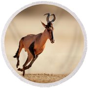 Red Hartebeest Running Round Beach Towel