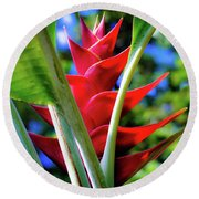 Red Heliconia Hawaii Round Beach Towel