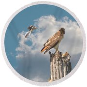 Red-tailed Hawk And Mockingbird Dispute Round Beach Towel
