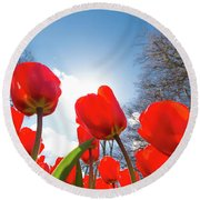Red Tulips Against Blue Sky Round Beach Towel