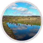 Round Beach Towel featuring the photograph Reflections Of Spring by Mike Dawson