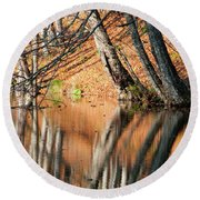 Round Beach Towel featuring the photograph Reflections by Okan YILMAZ