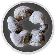 Ring Of Fossils Round Beach Towel