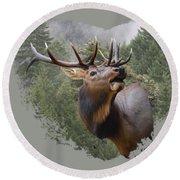 Rocky Mountain Elk Round Beach Towel by Jennifer Muller