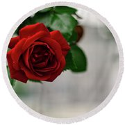 Roses In The City Park Round Beach Towel