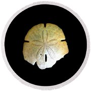 Round Beach Towel featuring the photograph Sand Dollar by Fred Wilson