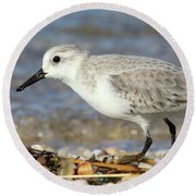 Sanderling Westhampton New York Round Beach Towel