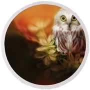 Saw-whet Owl Round Beach Towel by Suzanne Handel