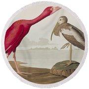 Scarlet Ibis Round Beach Towel by John James Audubon