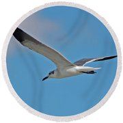 Round Beach Towel featuring the photograph 1- Seagull by Joseph Keane