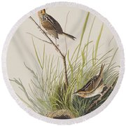 Sharp Tailed Finch Round Beach Towel