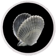 Shell 8-7 Round Beach Towel by Skip Willits