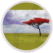 Single Tree Round Beach Towel by Charuhas Images