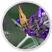 Round Beach Towel featuring the photograph Skipper by Douglas Stucky