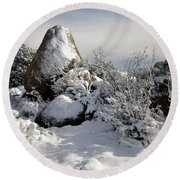 Snow Seal Rock Round Beach Towel