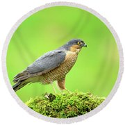 Sparrowhawk Round Beach Towel
