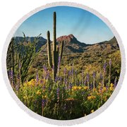 Round Beach Towel featuring the photograph Spring In The Sonoran  by Saija Lehtonen