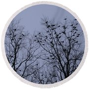 Starlings Round Beach Towel