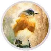 Strapping Bluebird Round Beach Towel by Tina LeCour