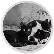 Street Cats - Portugal Round Beach Towel