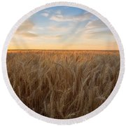 Round Beach Towel featuring the photograph Summer Wheat by Lynn Hopwood