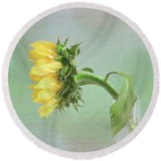 Sunflower In Profile Round Beach Towel by Louise Kumpf