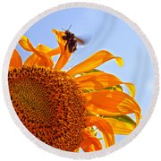 Bee On A Sunflower Round Beach Towel by Toni Hopper
