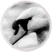 Swan Portrait Round Beach Towel
