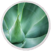 Swan's Neck Agave 2 Round Beach Towel
