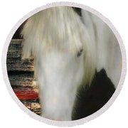 The Beautiful Face Of A Gypsy Vanner Horse Round Beach Towel