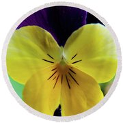 Round Beach Towel featuring the photograph The Face Of A Pansy by Brenda Jacobs