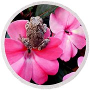 The Frog And The Flower Round Beach Towel