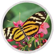 Round Beach Towel featuring the photograph The Postman Longwing  by Saija Lehtonen