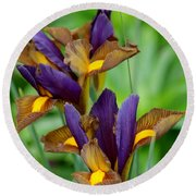 Tiger Irises Round Beach Towel