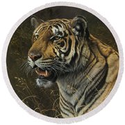 Tiger Portrait Round Beach Towel