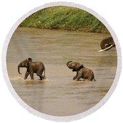 Tiny Elephants Round Beach Towel