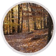 Round Beach Towel featuring the photograph Trail by Heidi Poulin