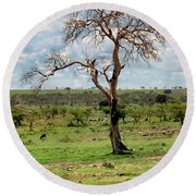 Round Beach Towel featuring the photograph Tree by Charuhas Images