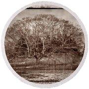 Tree In Marsh Round Beach Towel