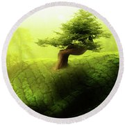 Round Beach Towel featuring the photograph Tree Of Life by Mo T